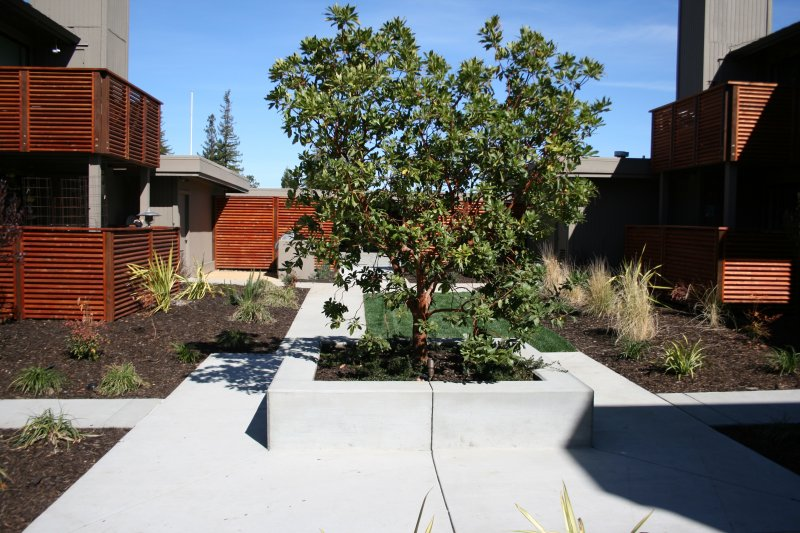 Concrete and Landscape