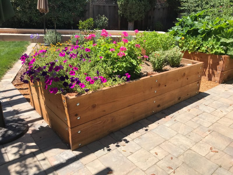 Raised Wooden Planter Beds Front Side  San Jose