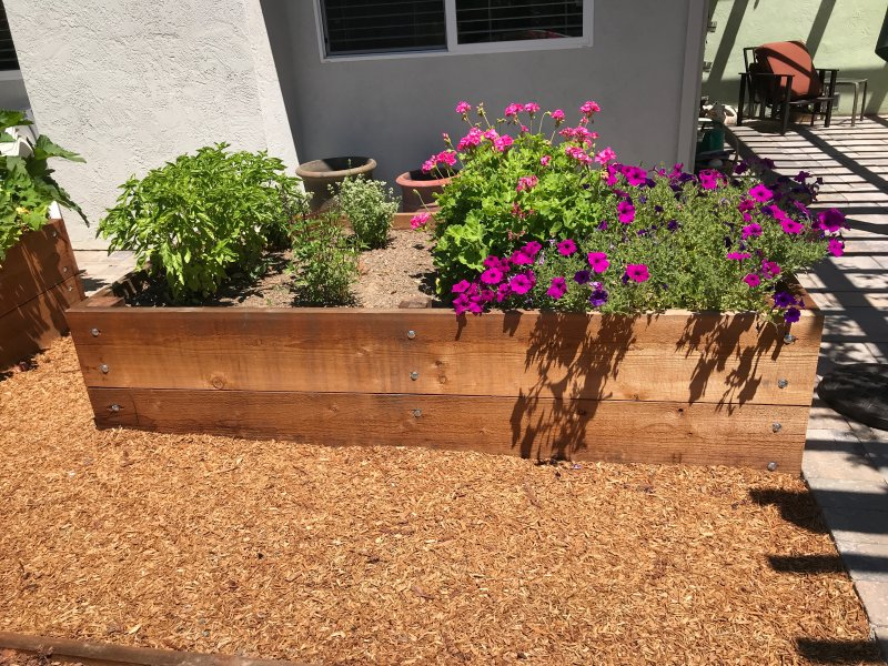 Raised Wooden Planter Bed Back Side San Jose